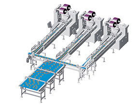 egg pie Packaging Line